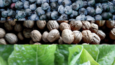 15 ANTI-INFLAMMATORY FOODS