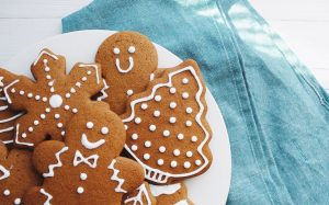 Protein Gingerbread Cookies